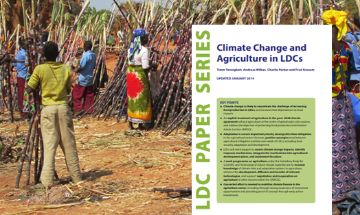 Climate Change and Agriculture in LDCs