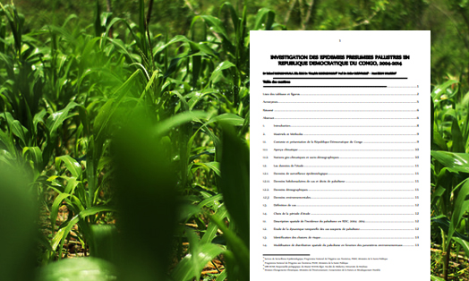 Submission by the Democratic Republic of Congo on behalf of the Least Developed Countries Group on the Nairobi Work Programme on impacts, vulnerability and adaptation to climate change
