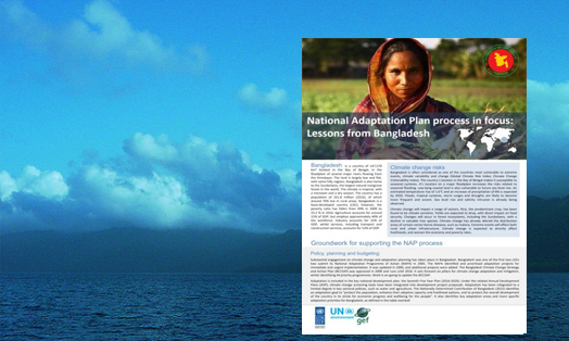 National Adaptation Plan Process in focus: Lessons from Bangladesh