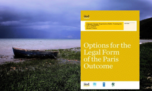 Options for the legal form of the Paris outcome
