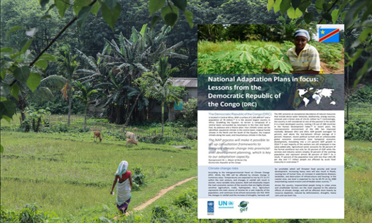 National Adaptation Plans in focus: Lessons from the Democratic Republic of the Congo