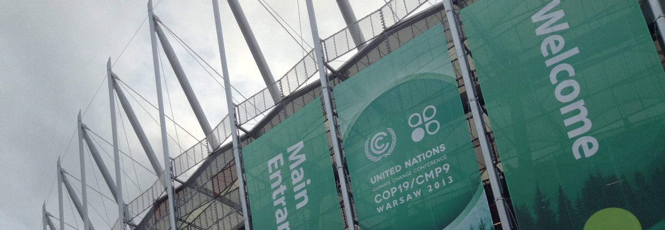 The LDC Group at COP 19: Expectations and Outcomes