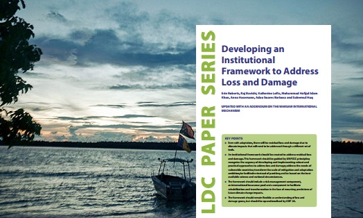 Developing an institutional framework to address loss and damage
