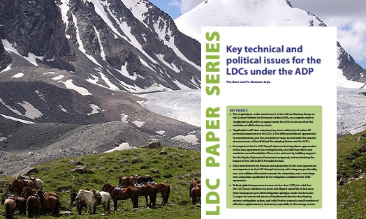 Key technical and political issues for the LDCs under the ADP