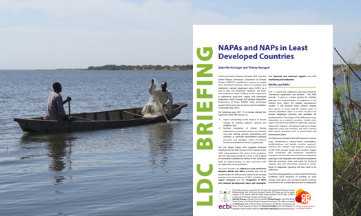 NAPAs and NAPs in Least Developed Countries