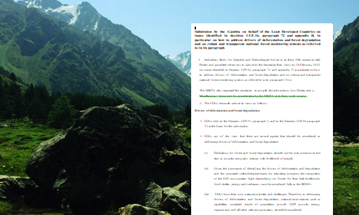 Submission by the Gambia on behalf of the Least Developed Countries on  issues identified in decision 1/CP.16, paragraph 72 and appendix II, in particular on how to address drivers of deforestation and forest degradation and on robust and transparent national forest monitoring systems as referred to in its paragraph
