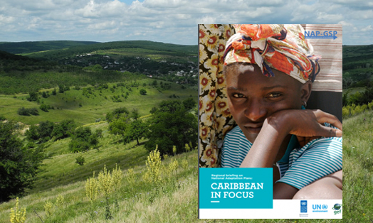 Regional Briefing on NAPs: Caribbean in Focus