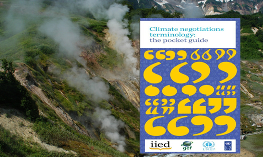 Climate Negotiations Terminology: The Pocket Guide
