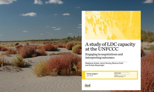 A study of LDC capacity at the UNFCCC