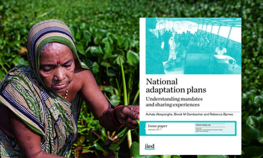National Adaptation Plans: Understanding mandates and sharing experiences